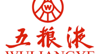 WULIANGYE GROUP LTD